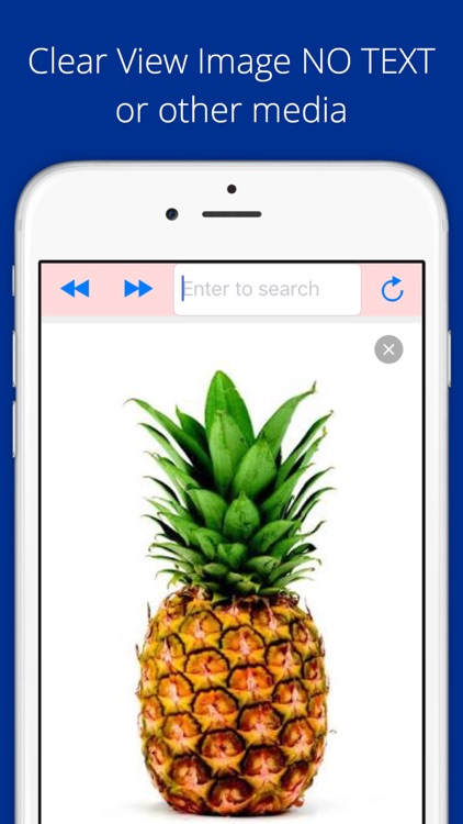 Universal Image Search Pro screenshot-2