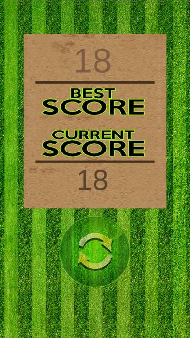 Bing Bong Cricket screenshot four