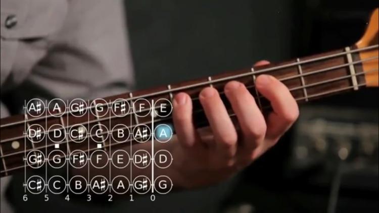 Play Bass