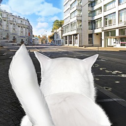 Cat In City Simulator