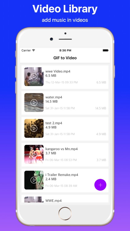 Add Music to Video Professional
