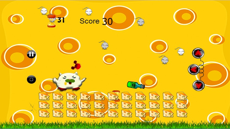 cat mouse cheese protect kids game by sarawut pholsud