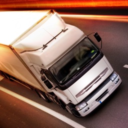 Euro Truck Driving Simulator 3D - Drive Real Trucks in City and Show your Driving & Parking Skills