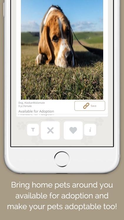 Pedore – Adore pets near by screenshot-4