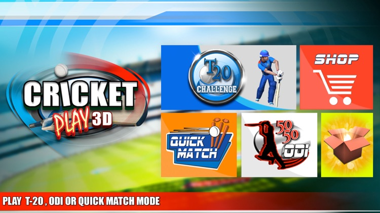 Cricket Play 3D - Live The Game (World Pro Team Challenge Cup 2016)