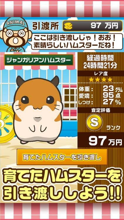 ぼくのハムスター~ハムスターを育てる楽しい育成ゲーム~ screenshot-3