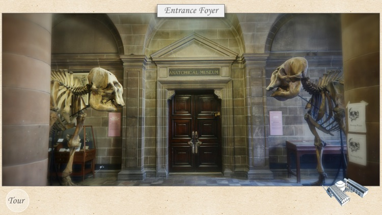 Edinburgh Anatomical Museum Tour By The University Of Edinburgh