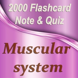 Muscular System Exam Review 2000 Flashcard Quiz & Study Note