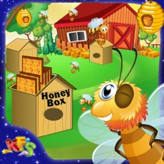 Activities of Bee Honey Farming – Little farmers feed & take care of the bees in the farm