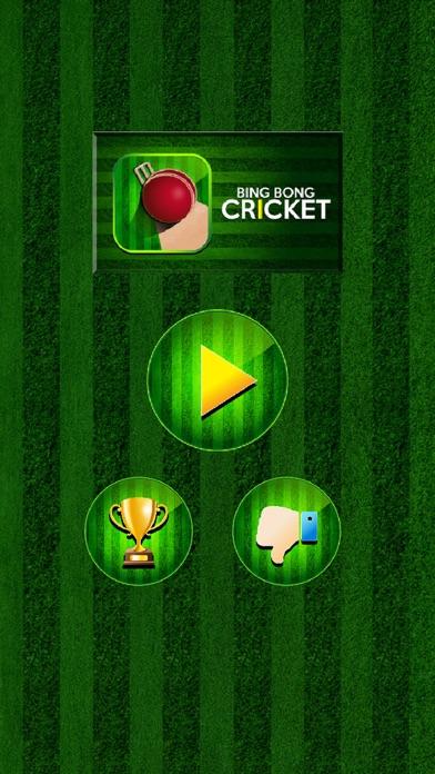 Bing Bong Cricket screenshot one