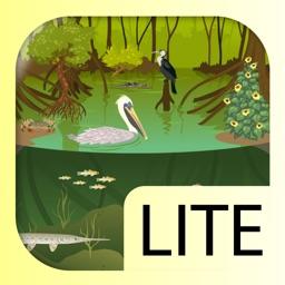 iBiome-Wetland Lite