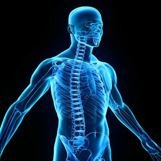 Human Body Encyclopedia Plus+