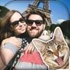 搞笑猫的照片炸彈 – 制作可爱的猫咪邮票真棒图片