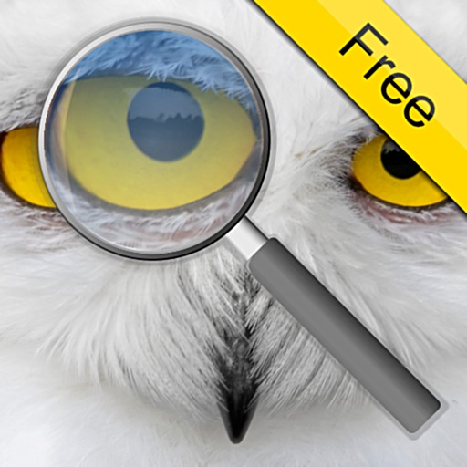Photo Loupe Free