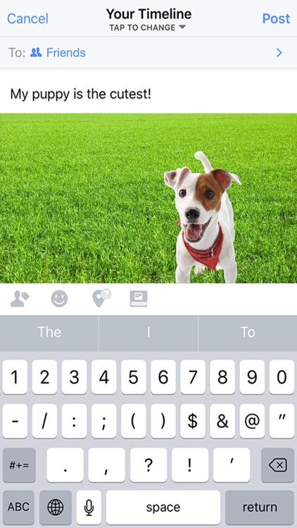 Pet-Peeps screenshot-3