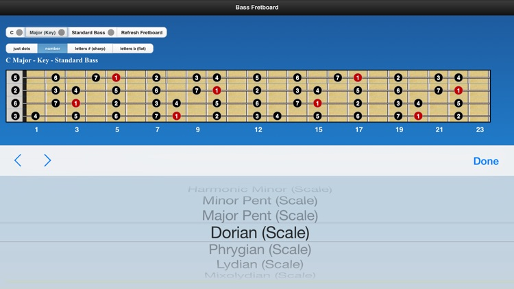 Bass Scales screenshot-3