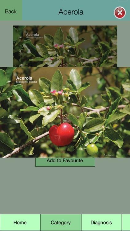 Edible Plant Guide screenshot-3