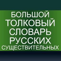 Большой толковый словарь русских существительных | Словари XXI века