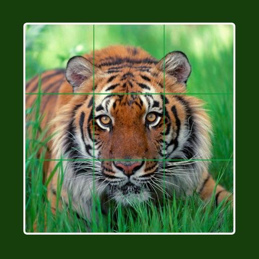 Animal tile puzzle - Животное плитка головоломка : Окончательный выпуск со слоном, льва, тигра, лошади, зебры, кролика, грызунов, белка и рыбы