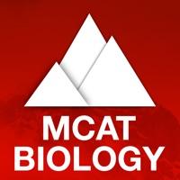 Codes for Ascent MCAT Biology Hack