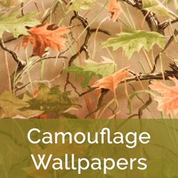 Camouflage Wallpapers HD 2015