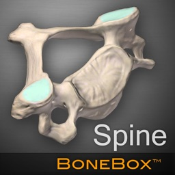 BoneBox™ - Spine Viewer
