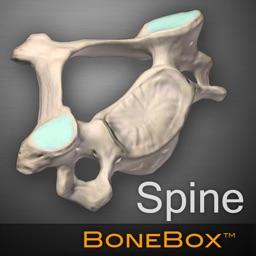 BoneBox™ - Spine Viewer