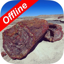 Petrified Forest National Park POI Map