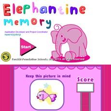 Activities of Elephantine Memory