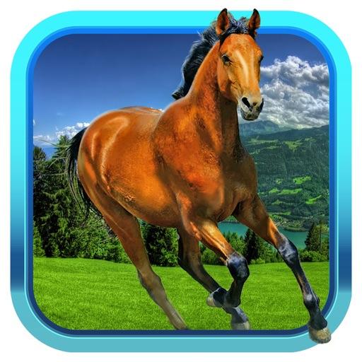Pony Dash 3D icon