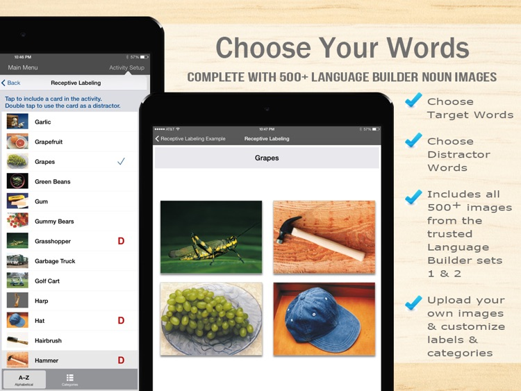 Language Builder® Pro