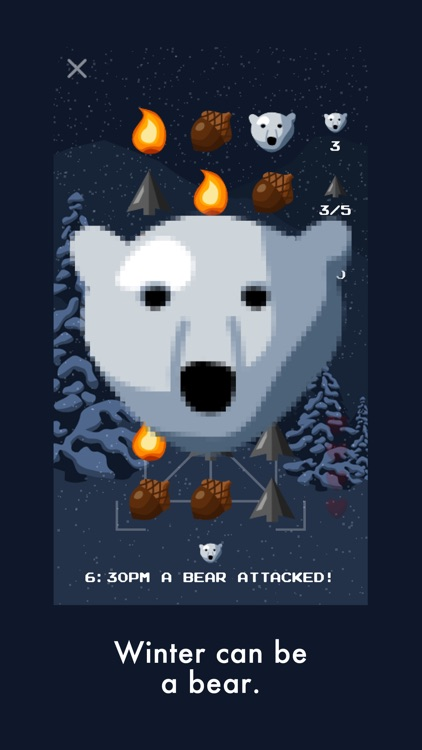 Bear Winter