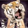 动物脸 - 图像编辑器,拥有超过价格无偿面临 – 好笑图片和拼贴 -合成照片,野生东北虎的眼睛,猫,狮子等