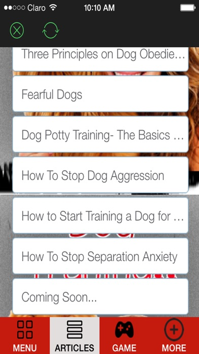 A How to Train a Puppy and Stop Dog Barking With Great training