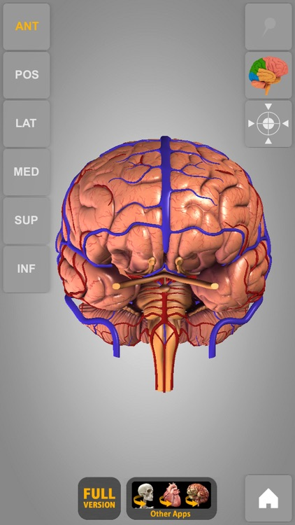 Brain - 3D Atlas of Anatomy Lite screenshot-3