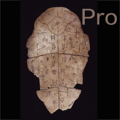 甲骨文Pro-汉字的字形演变
