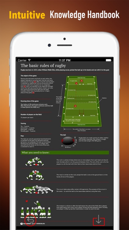 Rugby 101: Quick Learning Reference with Video Lessons and Glossary