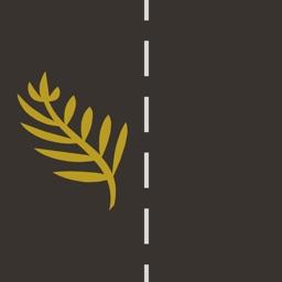NZ Driving Quiz