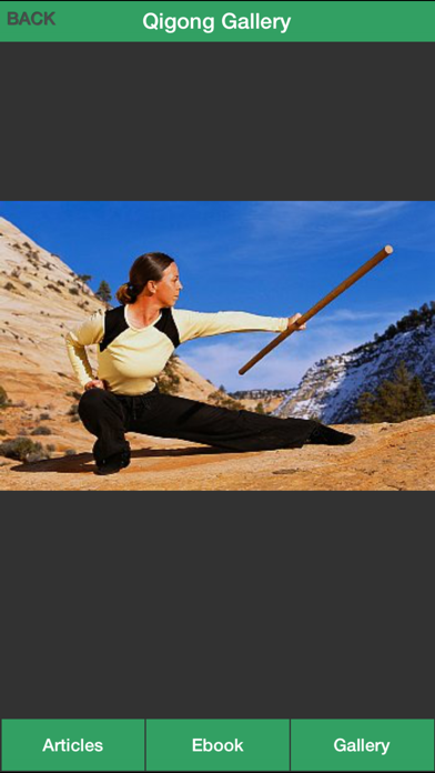 Qigong Guide - Everything You Need To Know About Qi Gong ! screenshot four