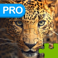 Activities of Big Cats Puzzle Pro - Forge The Jigsaw From Unscrambled Pieces