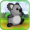 Koala Bear Zoo Animal Escape Run
