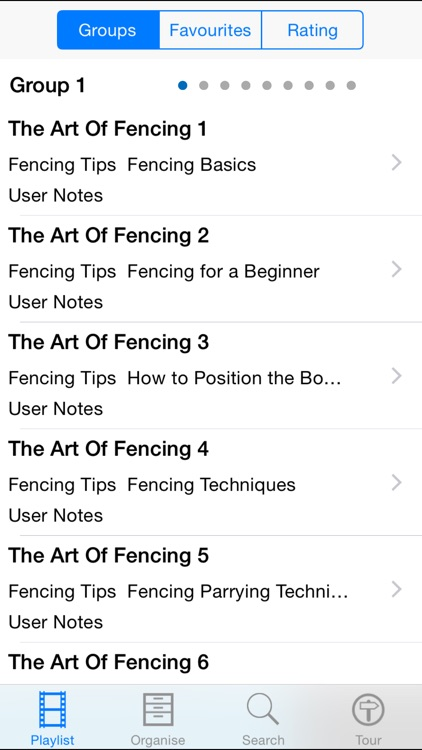 The Art Of Fencing screenshot-1