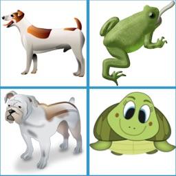 Animal's English Name Quiz Game
