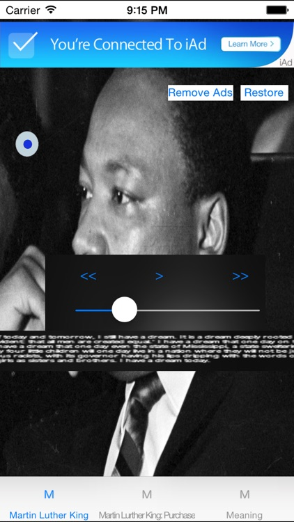 Martin Luther King Day - 19th January