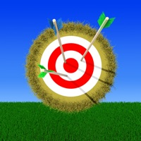 Codes for Archery Pro Hack