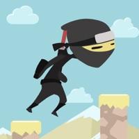 Codes for Amazing Ninja Jump Revenge Hack