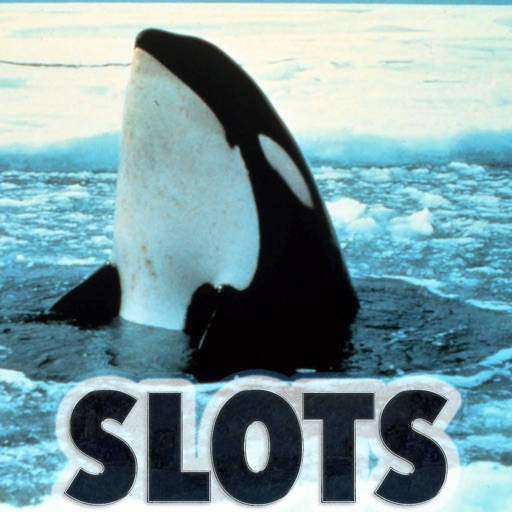 Happy Killer Whale Slots - FREE Las Vegas Casino Premium Edition
