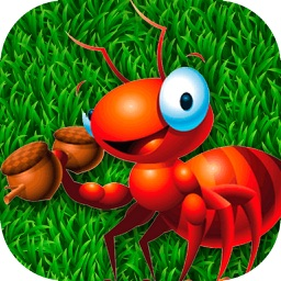 Ant Smasher PRO - Smash all those Pests!