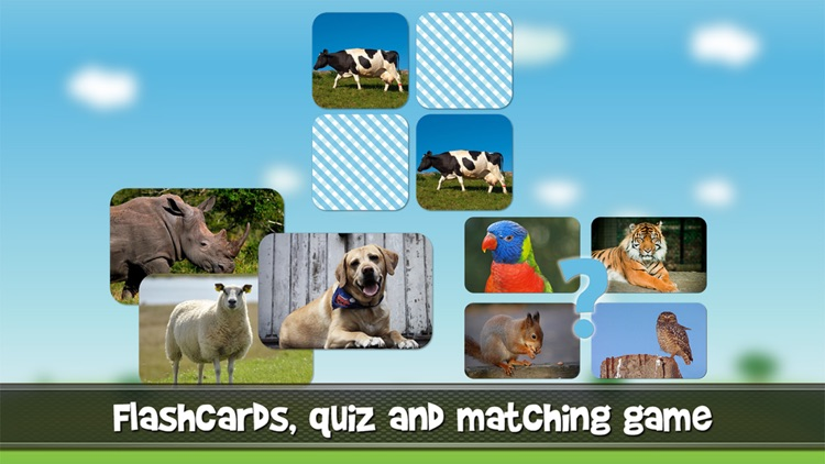 Animal sounds and photos for kids and babies - Touch to hear and learn animals sound and names