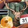 Solunar Calendar - Best Hunting Times and Feeding